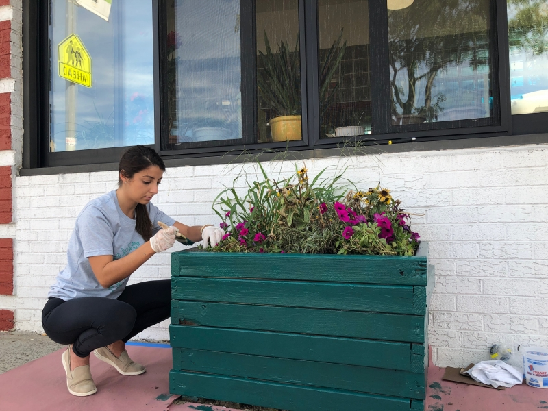 Volunteer works to paint the flower boxes outside of the Senior Center.